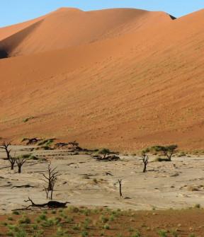 Salt Pan adjacent to dune indicates ocean's ancient presence