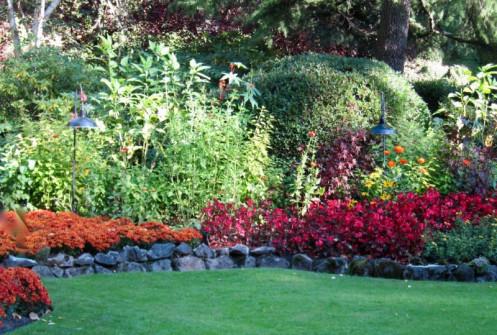 Contrasting colors & textures, Butchart Gardens