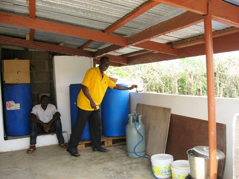 Ghana Successes: Backyard Neem Tree Inspires New Pharmaceuticals
